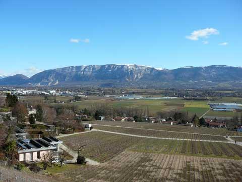 La journée des vignerons, Genève