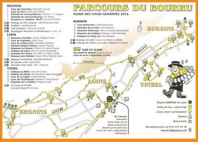 Découverte du Bourru, Luins