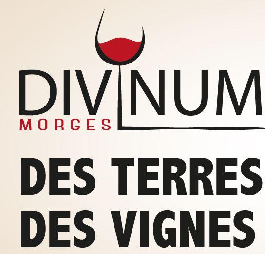 Salon Divinum, Morges