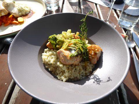 Saumon grillé, risotto d'orge