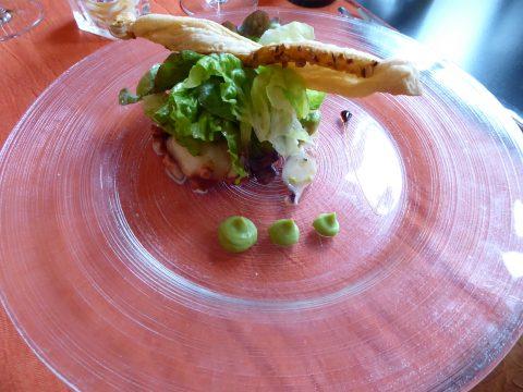 Salade de poulpe à la menthe et crème d'avocat