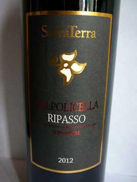 Valpolicella Ripasso Superiore SalvaTerra 2012