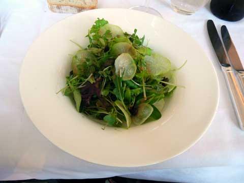 Saladine printanière, coulis de tomate