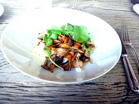Risotto carnaroli, champignons du moment, jus de veau