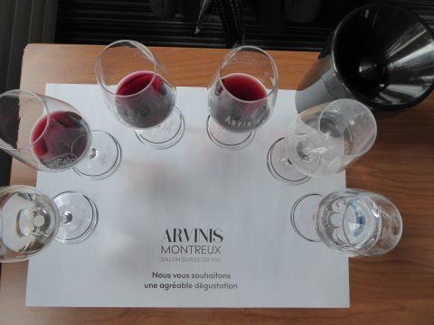 Dégustation de Vins de Moldavie