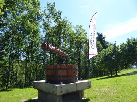 Domaine des Vaugues à Chigny