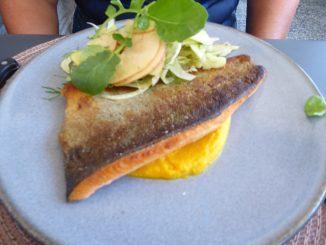 Filet de truite saumonée, purée de carottes, salade de pommes et fenouil