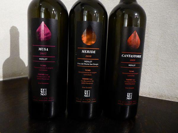 Drink Moi - Taste of Ticino - Vins Fa Vino